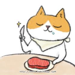 貓是肉食動物