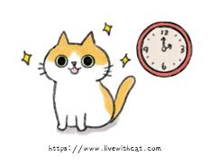 約時間看貓