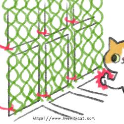 將網片用束帶綁上欄杆