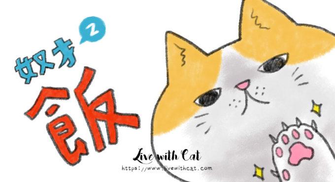 養貓前你該知道這些