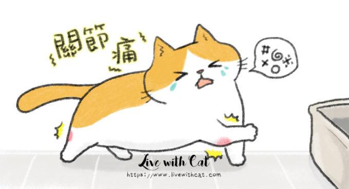 貓也有退化性關節炎
