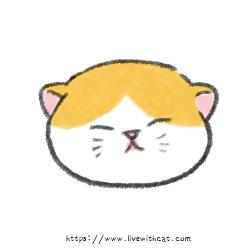 奶貓週齡-一週內