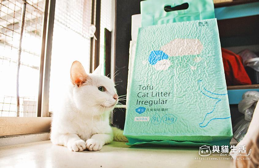 愛貓與貓砂合照
