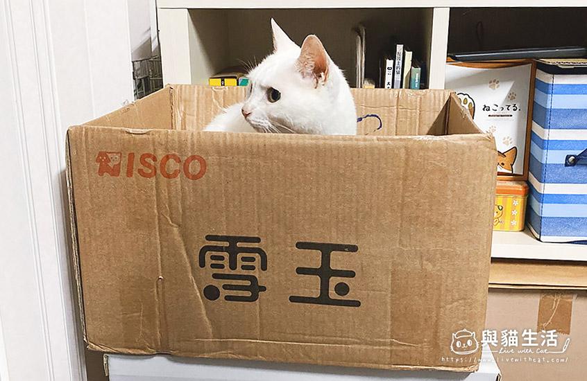 雪玉貓砂箱與Mini