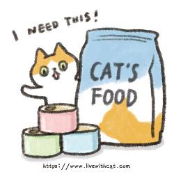 街貓餵食建議