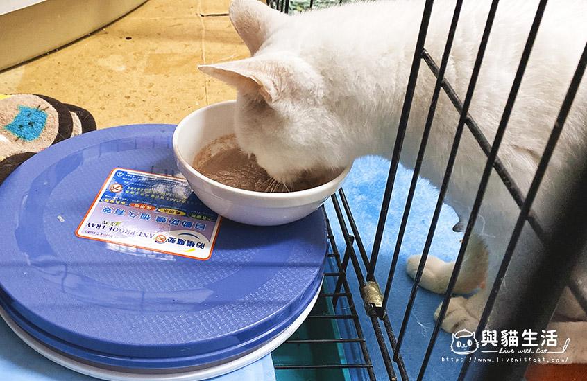 鰹魚雞肉燒自行試吃中